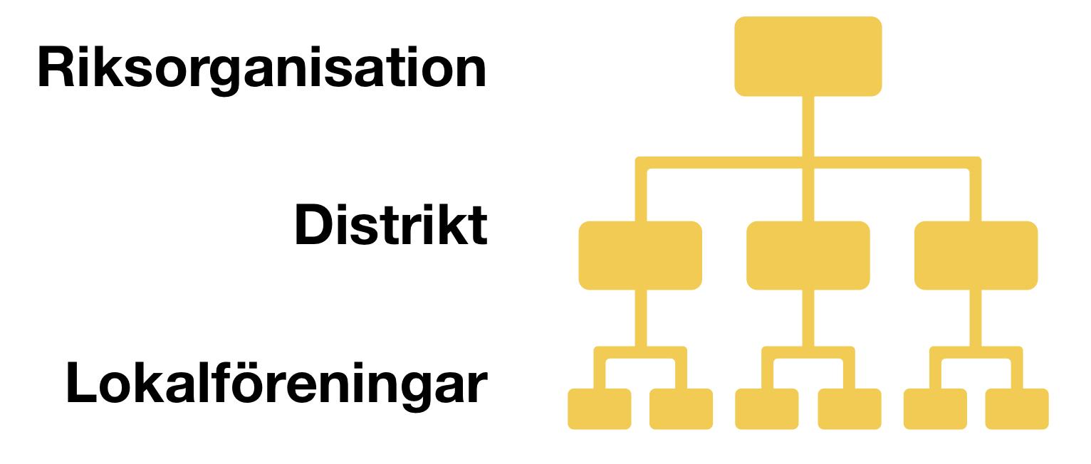 förbundsstruktur